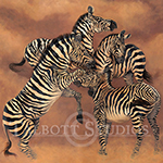 Zebra Dance, original oil painting of zebras playing by Eugenia Talbott