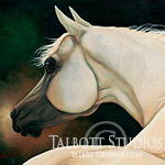 Portrait of Morning's Glory, original oil painting of an Arabian horse by Eugenia Talbott
