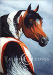 Portrait of M.T. Dona Meche, original oil painting of a half Arab Mustang mare by Eugenia Talbott