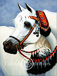 Portrait of Mei Spacho, original oil painting of an Arabian horse in traditional native costume by Eugenia Talbott