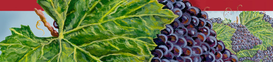 Banner / header image, detail of a watercolor painting of grape clusters and vines by artist Eugenia Talbott